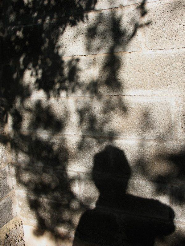 A l'ombra