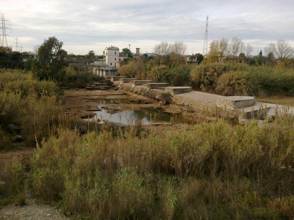 CAMINS D'AIGUA (2). L'arquitectura del riu.