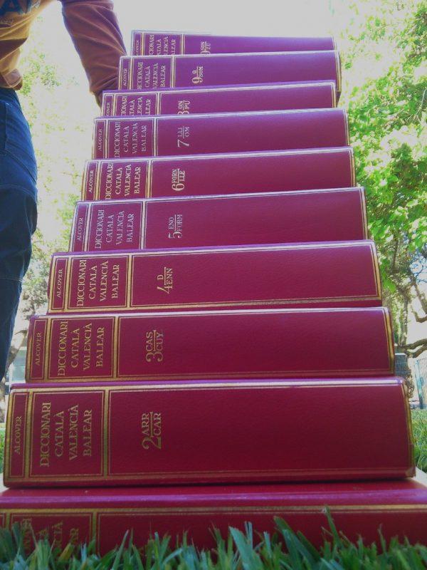 DCVB. 50 anys del Diccionari Català-Valencià-Balear