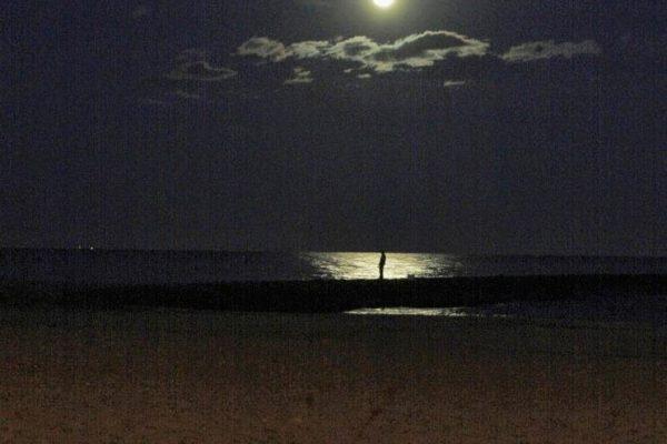 L'HOME I LA LLUNA. Lluna vella de novembre