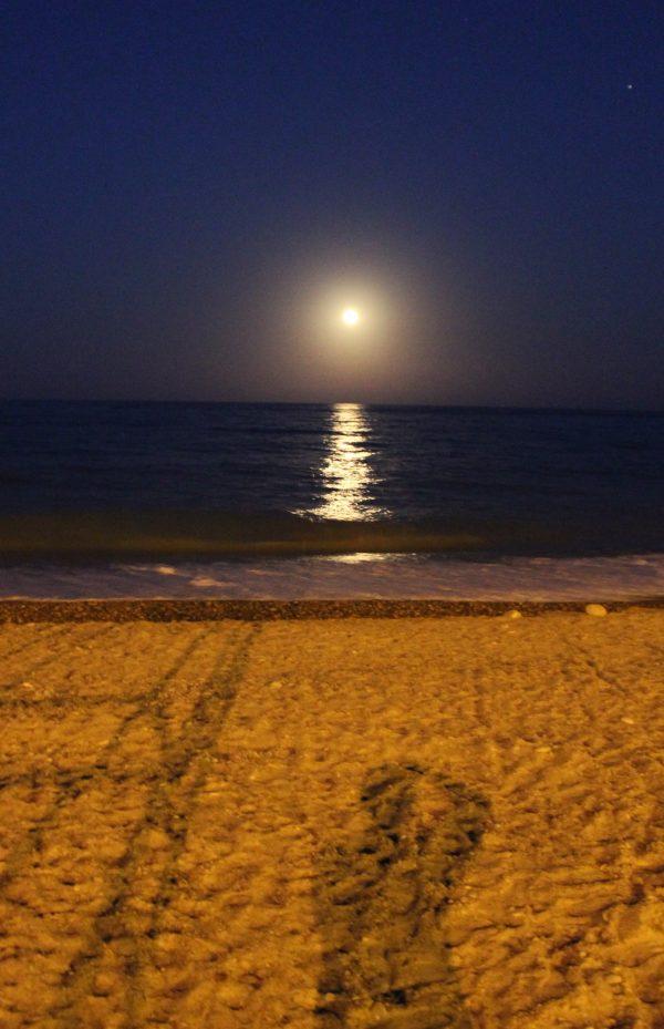 Lluna d'agost… Ara que ja ha passat