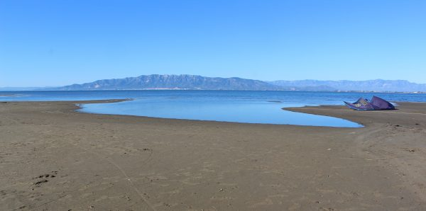 EL MAL DEL DELTA, UN DELS NOSTRES MALS. La mar que tenia marges (17)
